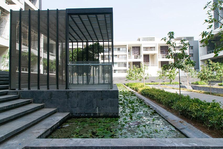 Lotus Pond, Plumeria Terrace and Cabana