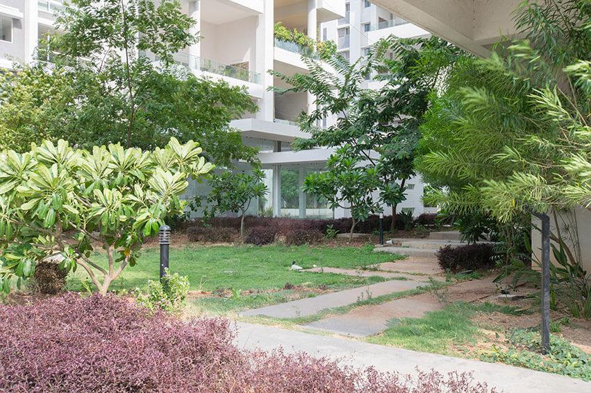 PH2 H Building Near Garden